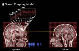 neurocouplingmodel